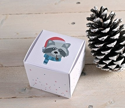 Square Christmas gift boxes Racoon