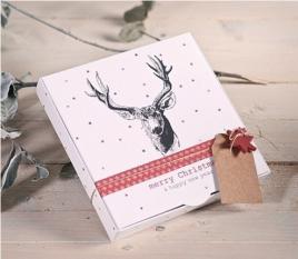 Scatole Regalo Natale 2210_M