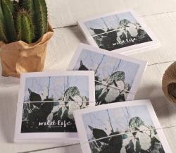 Custom card envelope for CDs