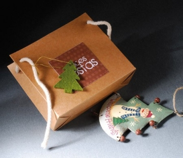 Cardboard gift bag for Christmas gifts
