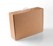 Carrying case box with handle