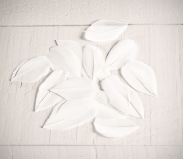 Plumas blancas para manualidades