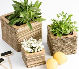 Cardboard Vases