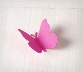 10 farfalle in cartone