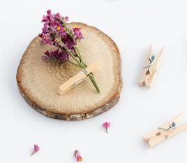 Mini pinze in legno