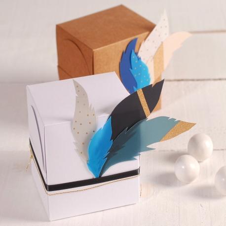 Caja de regalo cuadrada con plumas