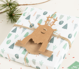 Rudolph-Ergänzung